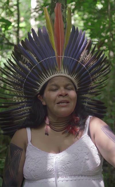 Los dueños de la selva en peligro