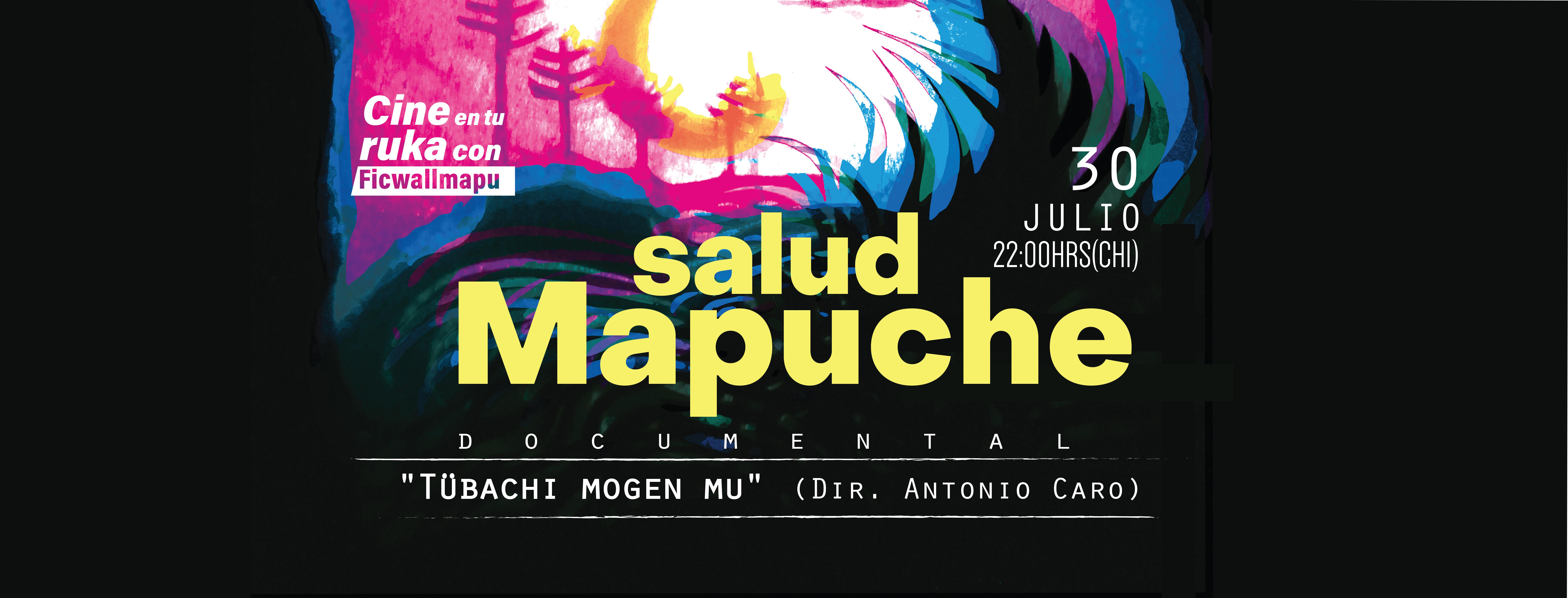 Salud mapuche